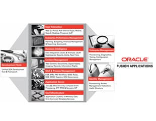 Oracle Fusion Application